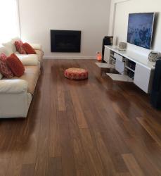 Brazilian Hardwood Species Evolution Forest Products